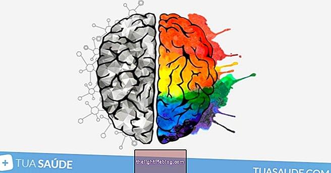 Kiire Alzheimeri tõbi: mis on teie risk?