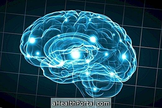 Retard mental modéré: caractéristiques et traitements