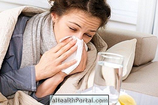 Glavni zapleti gripe