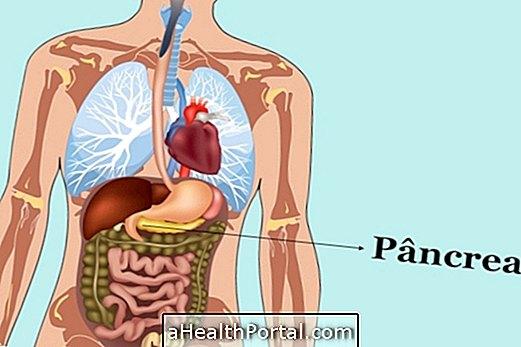 Pancreas और इसके संबंधित रोगों के कार्यों को जानें