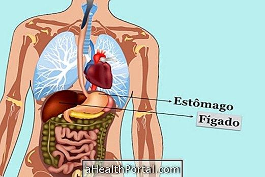 Saznajte više o funkcijama jetre