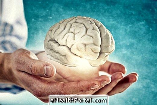 7 куриозитета о људском мозгу