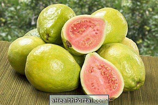 Prednosti guave