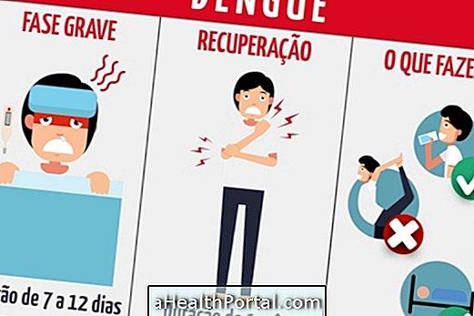 5 מחלות שעלולות להיגרם על ידי דנגי