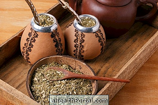 Benefits of Mate Tea for Health