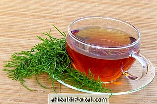 3 Corsetail tējas urīnceļu infekcijas