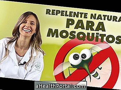 Cele mai bune remedii pentru Dengue